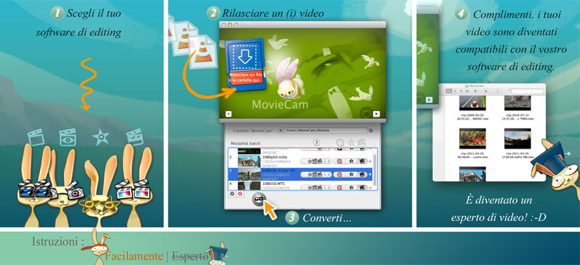 simple: 1-Select your preferred editing video software. 2-Drag and Drop files from your camcorder. 3-Launch conversion. 4-Congratulations, your file is now compliant with your software needs; you became a video expert! :-)
